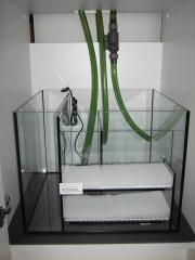 Filterbecken Scubacube 165 (c) EHEIM